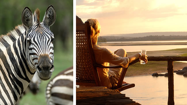 Masai Mara, Serengeti & Selous Luxury Safari